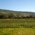 Curraghviller, Ballina, Tipperary