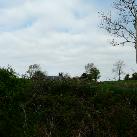 Ballymalonemore, Ballina, Tipperary