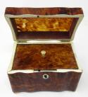 501. Fine Tortoiseshell and Ivory Single Tea Caddy mid 19thCt